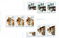 (1999) ZS 70 - 72 - Česká pošta - Chovatelství - Kočky