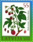 (2010) MiNr. 792 ** - Lotyšsko - Malina (Rubus idaeus)