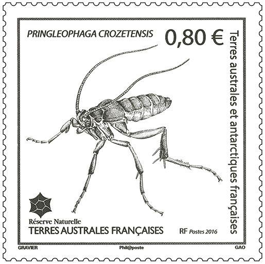 (2016) MiNr. 914 ** - Francouzská Antarktida - Bezkřídlí motýl