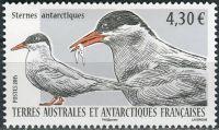 (2015) MiNr. 887 ** - Francouzská Antarktida - Antarktický mořský racek