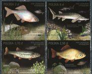 (2016) MiNr. 4861 - 4864 ** - 2 + 2,5 + 3,7 + 6 Zl - Polsko - Ohrožené druhy ryb