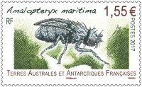 (2017) MiNr. 959 ** - Francouzská Antarktida - nelétavá moucha
