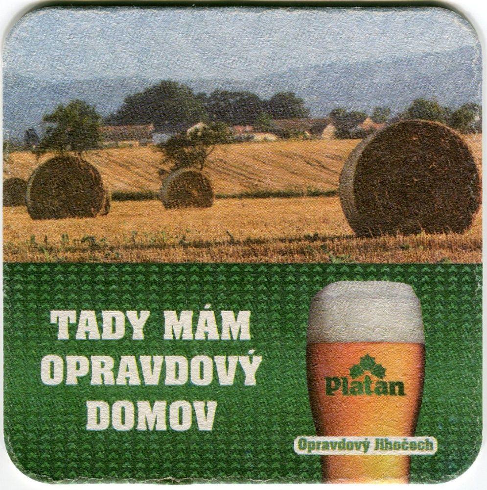 Protivín - pivovar - Platan - Tady mám opravdový domov