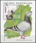 (1994) MiNr. 3515 ** - Polsko - BLOCK 126 - Polský holub