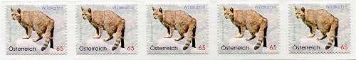 (2010) č. 2849 ** - Rakousko - Divoká kočka