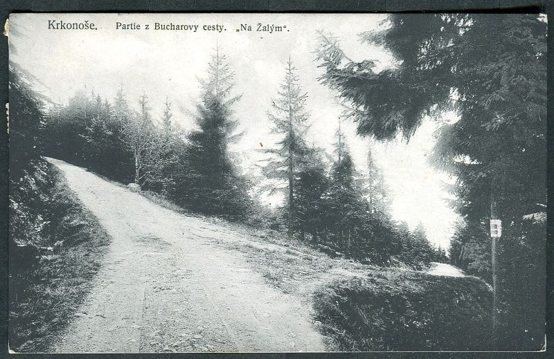 """Krkonoše - Partie z Bucharovy cesty (""""Na Žalým"""") 1913/14"""