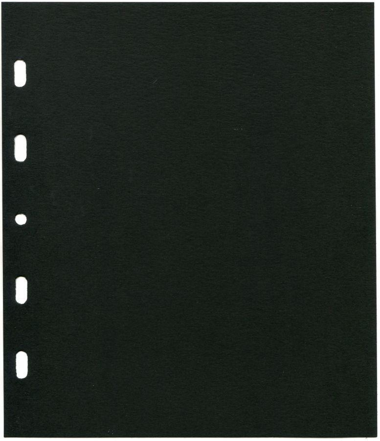 Černý mezilist - TGW systém